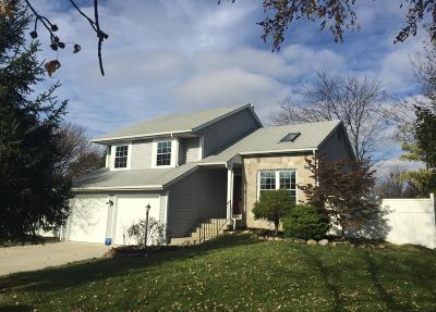Hilliard Single Family Home Contingent Finance And Inspect: 5390 Carina Court