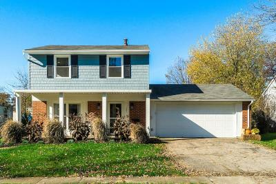 Gahanna Single Family Home For Sale: 387 Canfield Drive