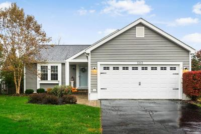 Hilliard Single Family Home Contingent Finance And Inspect: 5145 Hidden View Drive