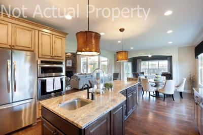 Dublin Single Family Home Contingent Finance And Inspect: 9043 Mediterra Place