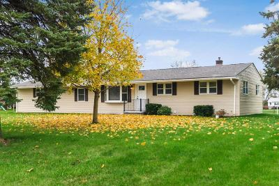 Galloway Single Family Home For Sale: 5985 Bausch Road