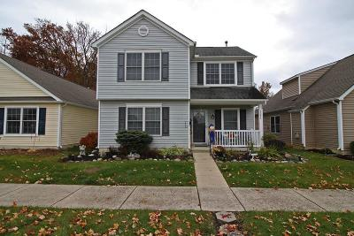Delaware County, Franklin County, Union County Single Family Home For Sale: 6073 Eden Valley Drive