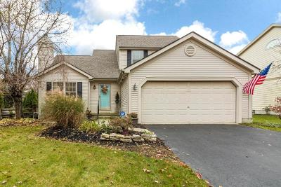 Delaware Single Family Home For Sale: 245 Dogwood Drive