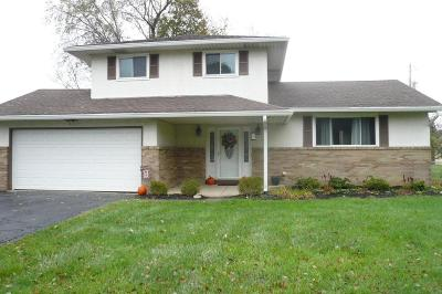 Pickerington Single Family Home Contingent Finance And Inspect: 9877 Refugee Road