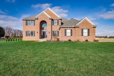 Franklin County, Delaware County, Fairfield County, Hocking County, Licking County, Madison County, Morrow County, Perry County, Pickaway County, Union County Single Family Home For Sale: 11381 Trenton Road