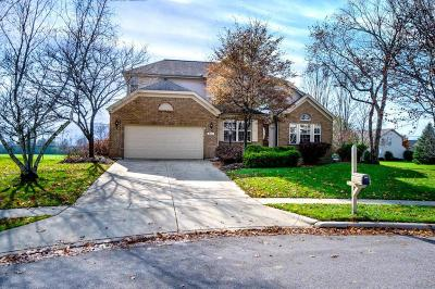 Pickerington Single Family Home Contingent Finance And Inspect: 845 Dunvegan Court