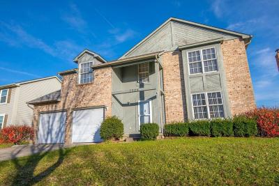 Westerville Single Family Home For Sale: 7984 Hightree Drive