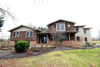 Johnstown Single Family Home For Sale: 9175 Miller Road NW
