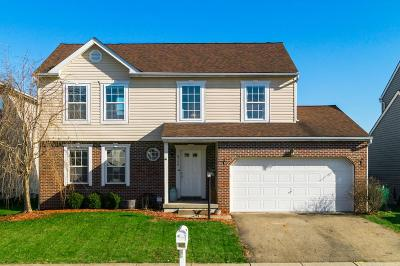 Single Family Home For Sale: 8798 Greylag Loop