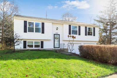 Westerville Single Family Home For Sale: 1032 Newfields Lane