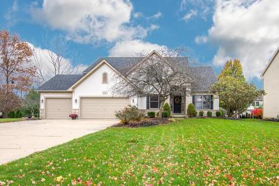 Westerville Single Family Home For Sale: 5712 Seminole Way