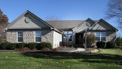 Franklin County, Delaware County, Fairfield County, Hocking County, Licking County, Madison County, Morrow County, Perry County, Pickaway County, Union County Single Family Home For Sale: 5333 Agate Place