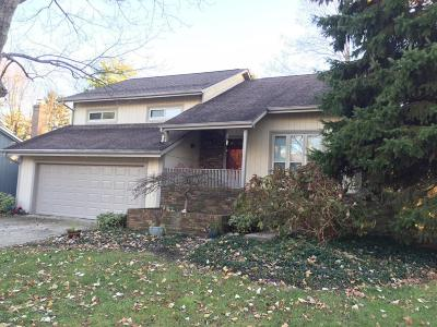 Dublin Single Family Home Contingent Finance And Inspect: 271 Clover Court