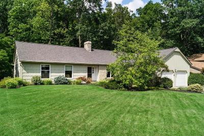 Columbus Single Family Home For Sale: 1044 Blind Brook Drive