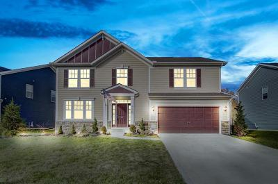 Hilliard Single Family Home For Sale: 3426 Woodland Drive
