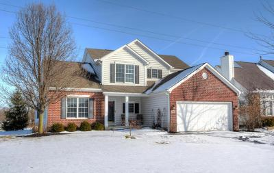 New Albany Single Family Home Contingent Finance And Inspect: 4782 Bosk Drive