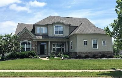 Blacklick Single Family Home For Sale: 7435 Trevenia Drive