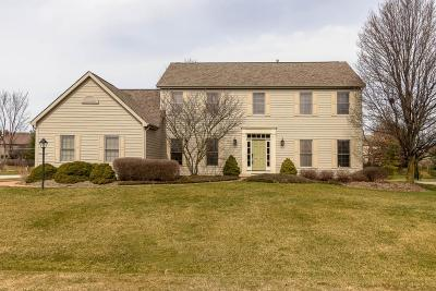 Lewis Center Single Family Home For Sale: 6195 Sloop Drive