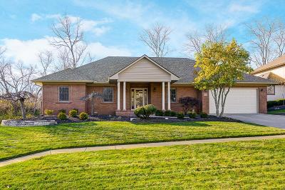 Grove City Single Family Home Contingent Finance And Inspect: 6041 Grant Run Place
