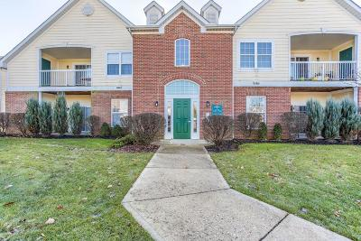 Dublin Condo Contingent Finance And Inspect: 7734 S Essex Gate Drive