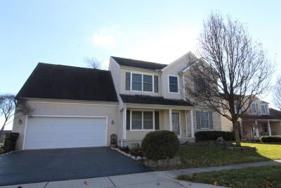 Hilliard Single Family Home For Sale: 5975 Pondview Court