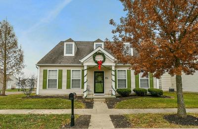 Westerville Single Family Home For Sale: 6111 Carlatun Street