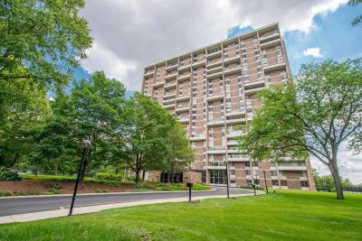Condo Contingent Finance And Inspect: 1000 Urlin Avenue #1008