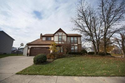 Grove City Single Family Home For Sale: 3271 Grovepark Drive