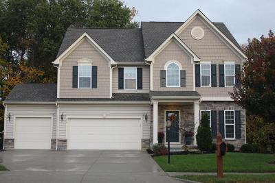 Pickerington Single Family Home For Sale: 290 Blue Jacket Circle