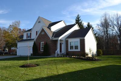 Gahanna Single Family Home Contingent Finance And Inspect: 276 Spruce Hill Drive