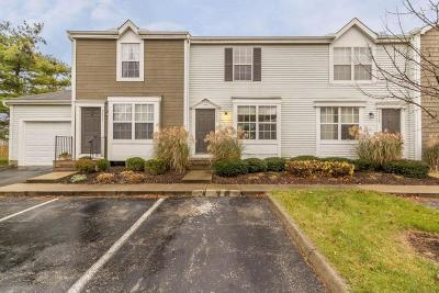 Hilliard Condo For Sale: 5113 Singleton Drive #39B