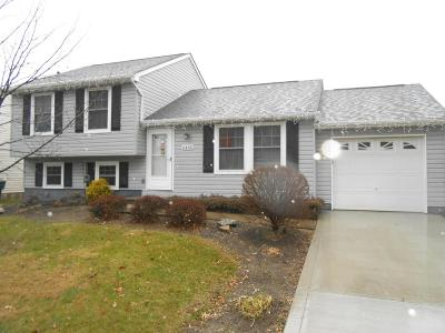 Reynoldsburg Single Family Home For Sale: 6442 Mountaineer Trail Court