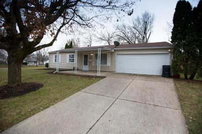 Hilliard Single Family Home For Sale: 4571 Edgewyn Avenue