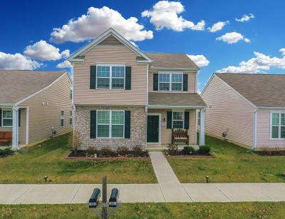 Westerville Single Family Home For Sale: 5991 Deansboro Drive