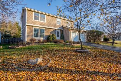 Columbus Single Family Home For Sale: 266 Maybank Court