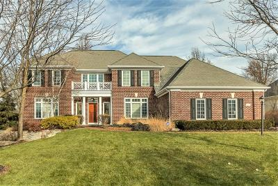 Dublin Single Family Home For Sale: 4256 Wyandotte Woods Boulevard