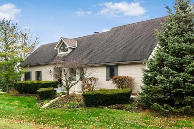 Dublin Single Family Home Contingent Finance And Inspect: 8742 Craigston Court