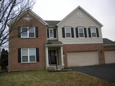 Pickerington Single Family Home For Sale: 210 Carson Court