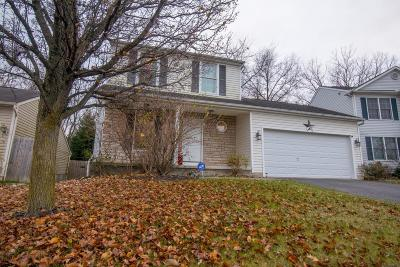 Grove City Single Family Home For Sale: 3517 Spring Branch Drive