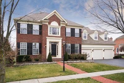 New Albany Single Family Home For Sale: 4008 Tumblebrook Drive
