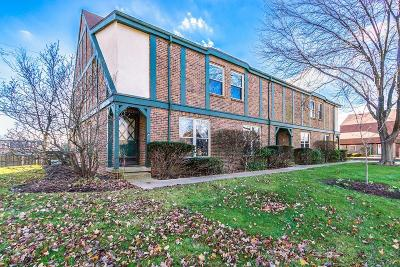 Upper Arlington Condo For Sale: 1563 Sandringham Court
