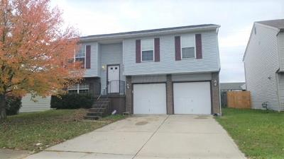 Columbus Single Family Home For Sale: 4685 Parkwick Drive