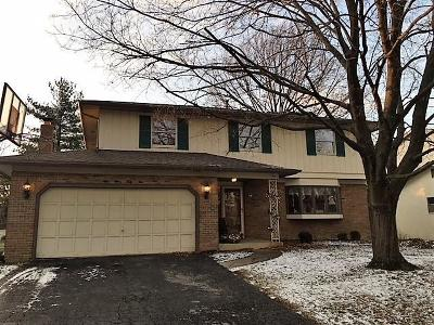 Columbus Single Family Home For Sale: 5945 Blue Spruce Street