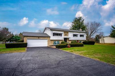 Hilliard Single Family Home For Sale: 4787 Cosgray Road