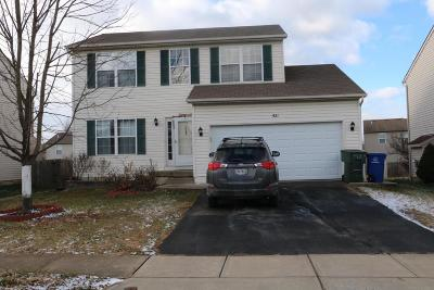 Blacklick Single Family Home For Sale: 521 Dover Pond Drive
