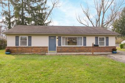 Single Family Home For Sale: 987 Conant Drive