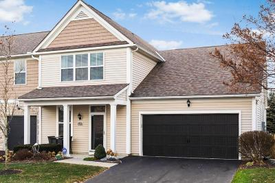 Hilliard Single Family Home For Sale: 4573 Tremont Club Drive
