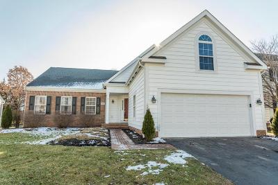 Powell Single Family Home For Sale: 247 Chasely Circle
