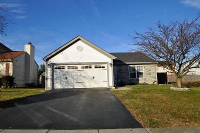 Columbus Single Family Home Contingent Finance And Inspect: 2907 Blue Top Drive