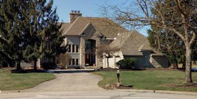 Blacklick Single Family Home For Sale: 1347 Spanish Trail Court